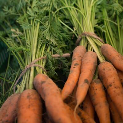 BioHof Amberger Möhren Karotten